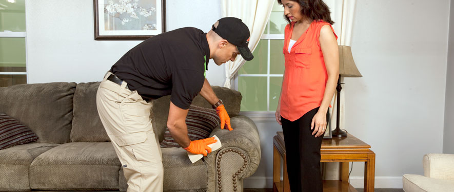 Spokane Valley, WA carpet upholstery cleaning